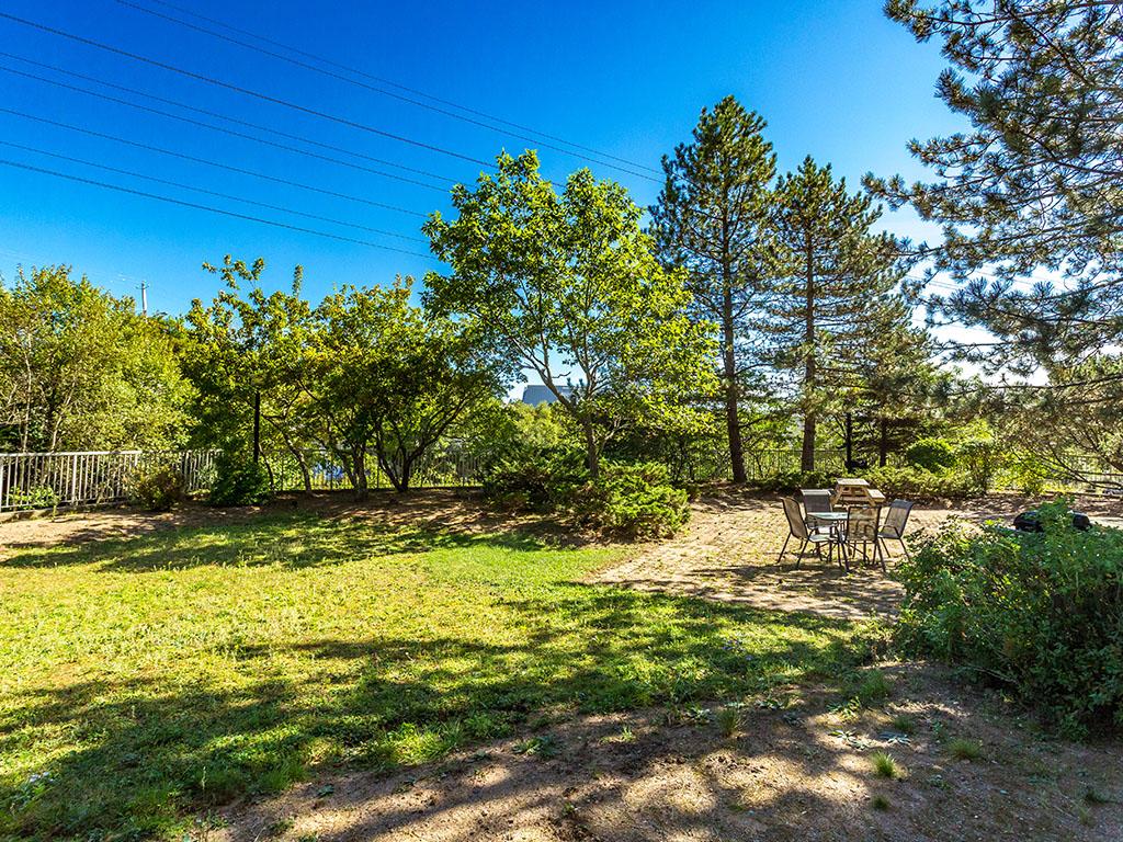 olivetgardensbackyard